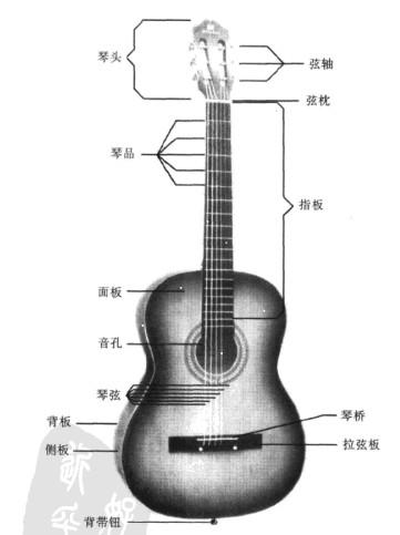 电吉他的音箱部位则是一块